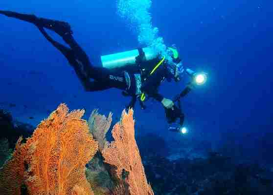 Aceh International Diving Festival 2019 Digelar di Sabang